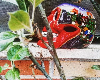 Red colors skull