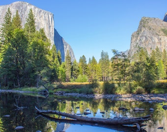 Yosemite Reflections