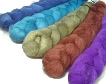 Handpainted BFL Wool Roving Bundle - 5 oz. CALYPSO - Spinning Fiber