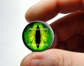 Glass Eyes - Green Dragon Glass Eyes Glass Taxidermy Doll Eyes Cabochons  - Pair or Single - You Choose Size
