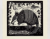 A is for armadillo spanis...