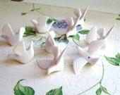 Cream White Doves in Flight(10) b1674b