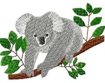 SFancy Koala 4 x 4