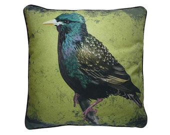 Cushion cover for throw pillow with bird - Starling - 16x16inch // 40x40cm