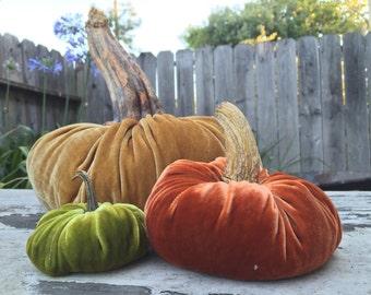 Silk Velvet PUMPKIN KIT - Large Pumpkin - Choose Your Color