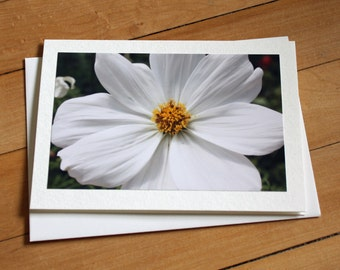 Handmade Greeting Card with White Cosmo