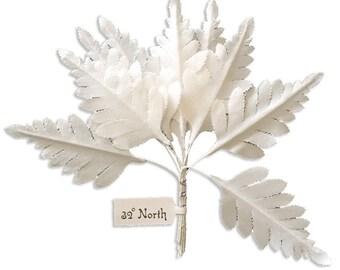 Millinery Leaves Czech Republic 10 Fabric White Fern Leaves  NLC-119W