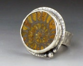 Ammonnite Ring, fossil ring, sterling silver, size 7.5, round ammonite ring