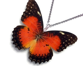 Real Butterfly Wing Necklace (WHOLE Cethosia Biblis Butterfly - Recto - W117)