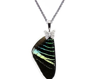 Real Butterfly Wing Pendant / Necklace  (Urania Leilus Forewing - N033)