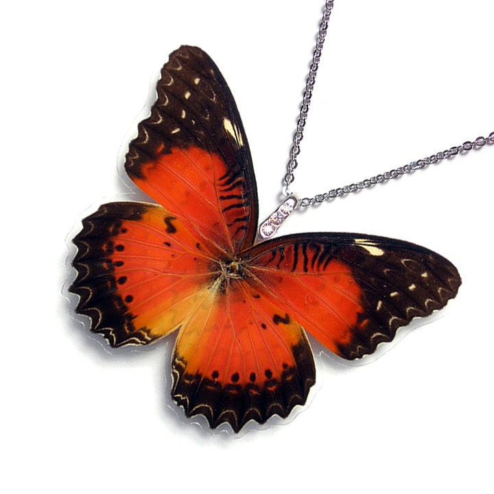 Real Butterfly Wing Necklace WHOLE Cethosia Biblis Butterfly