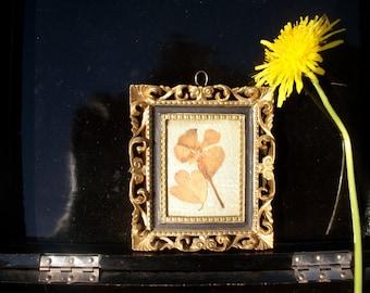 Vintage Tiny Pressed Flower Framed