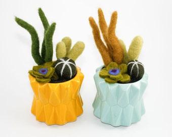 Felted Cactus Garden in Modern Ceramic Pot (Choose Bright Yellow or Aqua Blue)