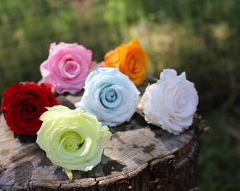 "Preserved Rose Heads-2 1/2"" Preserved rose head-Wedding rose-soft red rose--pink rose bud-Yellow Rose bud-Corsage rose..."