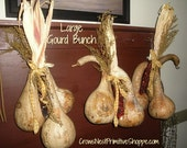 Large Gourd bunch with Corncob is made with my large dipper gourds, organically grown corn and a few sprigs of sweet annie