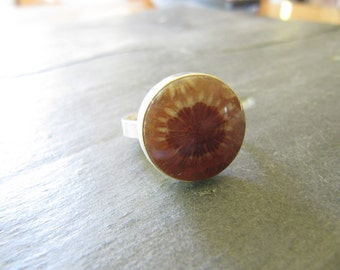 Ring of Fossil Coral in Sterling Silver