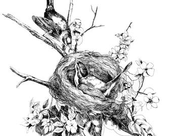 Two Birds in Nest - Digital Print