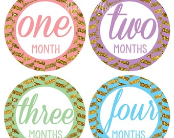 FREE GIFT,  Baby Girl Monthly Stickers, Baby Month Stickers, Photo Prop Milestone Stickers, Bodysuit Stickers, Baby Belly Stickers