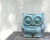 blue planter owl sucullant planter  utensil holder in robins egg blue