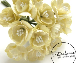 12 Small Paper Cherry Blossom Flowers for Millinery, Headress & Tiara Making - Cream