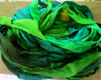 Parrot Plumage Recycled Sari Silk Ribbon 19 Yards Wide Ribbon for Yarn Jewelry Weaving Spinning