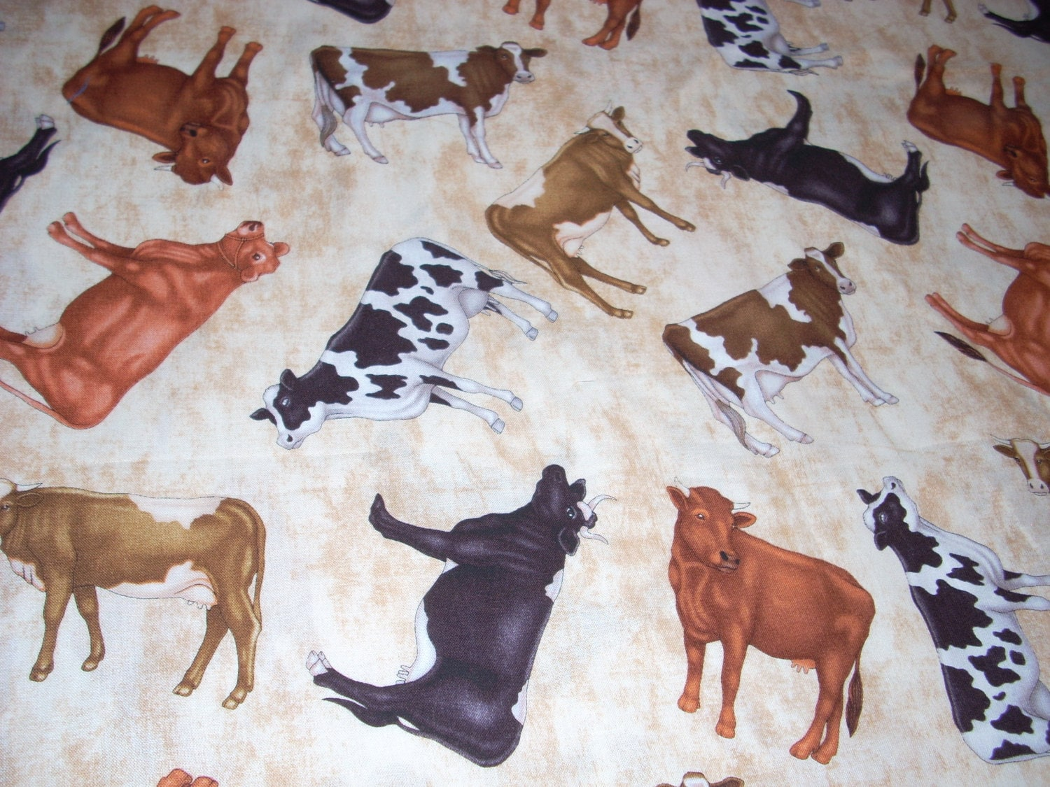 Cow Cotton Fabric 44 Wide Sold By The Yard By Quiltsbylauren