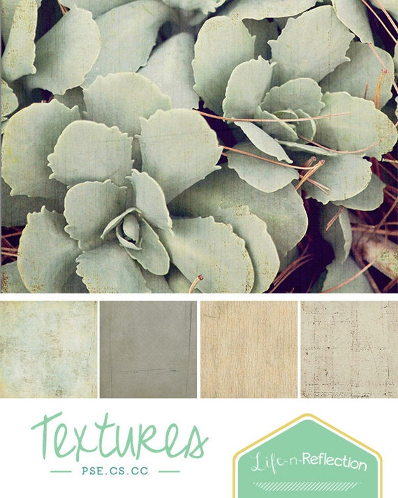 Artist Texture Collection: Vol 2