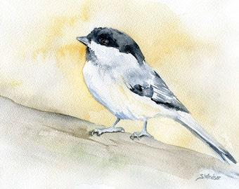 Chickadee Watercolor Painting Print 5 x 7 - Bird Watcher - Bird Painting