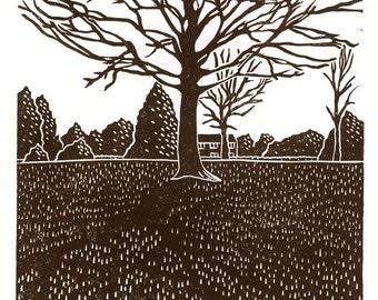 Tree Study No.2 (Clay Wood) linocut print in dark brown