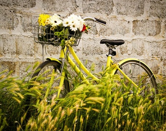 Bike Photography Fine Art Print , Bike Art , Bike Basket , Summer,  5 Seconds Of Summer , Yellow, Green , Wall Art , Home Decor