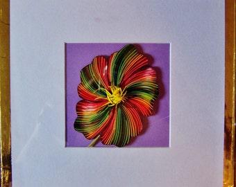 flower ~ rainbow