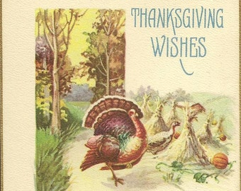 Turkey in the Woods By Corn Field Vintage Thanksgiving Postcard Stecher Litho