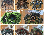 Handmade Spiders other Invertebrates Stickers & Magnets