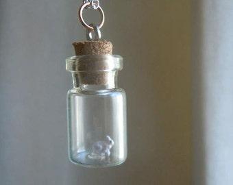 Super tiny white rabbit in bottle
