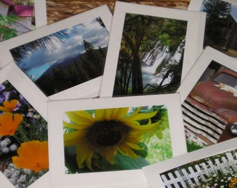 "Take Your Pick 5"" x 7""  Blank Note Cards by Carla Garloff"