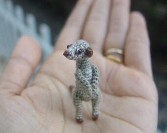 tiny crochet meerkat - dollhouse decor - tiny amirugumi meerkat