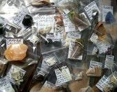 Curiosity Collection Grab Bag - 10 Pieces