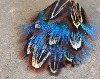 Blue Fire Feather Hairclip for Casual Looks or Dressing Up