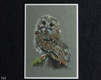Wise Owl Pastel Print, owl art, owl drawing, owl illustration