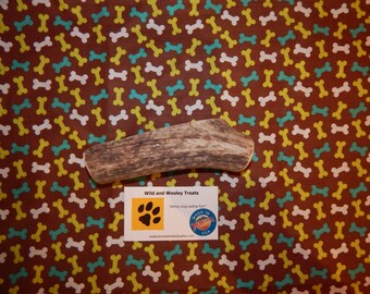 Large Elk Antler Dog Chew Split (Lot W16)