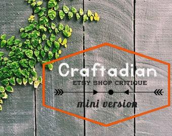 Quick Etsy Shop Critique - Mini Critiques - Etsy Shop Help - How to improve Etsy shop