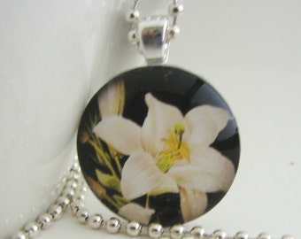 Lily at Midnight Pendant with Free Necklace