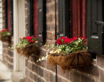 Historic Window with Flower Box Color Photograph, Black Horse Tavern, Bucks County, Pennsylvania, Colonial, Black, Red, Beige, Art Print