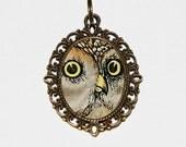 Owl Face Necklace, Owl Eyes, Bird Jewelry, Owl Pendant, Owl Jewelry, Oval Pendant