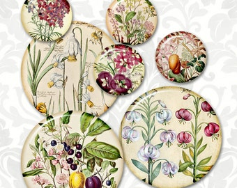 2 in and 1 in  Printable circles Download for jewelry pendants - floral Digital Collage Sheet, best for  decoupage, bottle caps  (31)