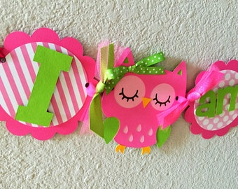 Owl Birthday Party High Chair Mini Banner - Pink and Green - Owl Party Decorations - Owl First Birthday - Owl High Chair Garland - Owl Girl