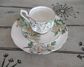 Vintage Royal Albert Bone China Teacup Flower of the Month Series Hawthorne May Birthday Gift Cottage Chic Floral Tea Cup Cup and Saucer
