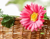 Bike basket garland pink daisy reflective Petal Brite
