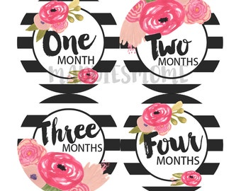 Baby Girl Month Stickers Monthly Baby Stickers, Milestone Bodysuit Stickers Vintage Modern Floral Watercolor Flowers Black Stripes (Bernice)