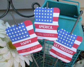 July 4th Favors 4th of July Favors July 4th Decoration Fourth of July Favors Fireworks Favors Cupcake Toppers Food Picks Table Centerpiece
